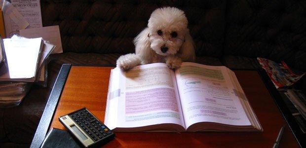 studyingonline