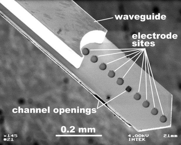 02NWOptoElectronics-1360781602707
