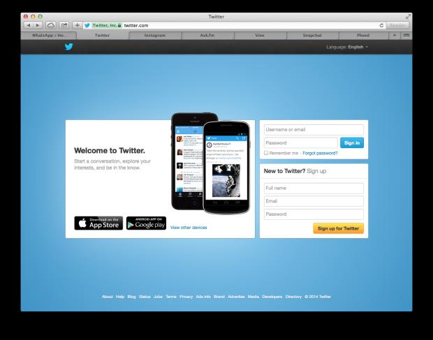 Twitter Website Screenshot