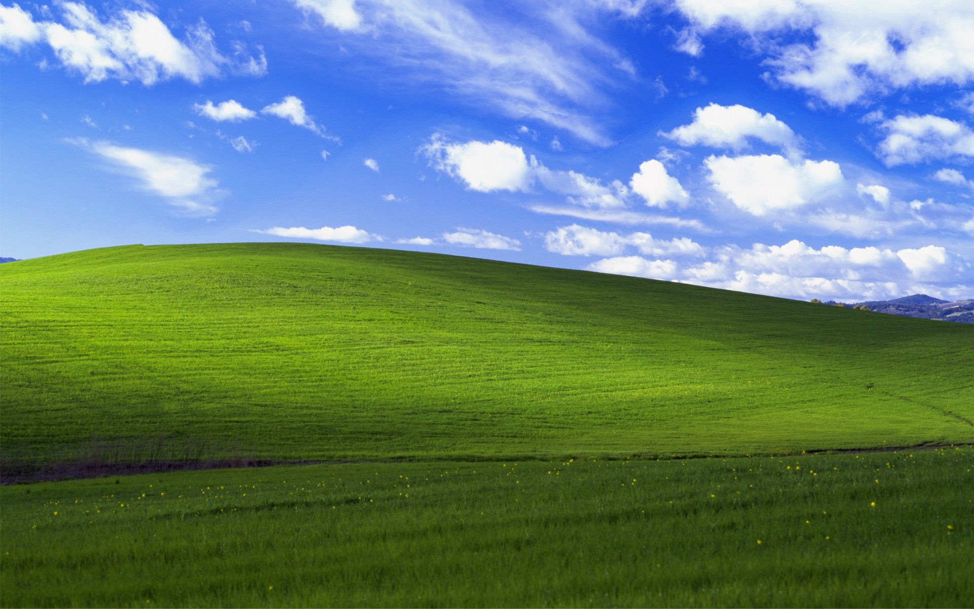 windows xp bliss wallpaper 1297212