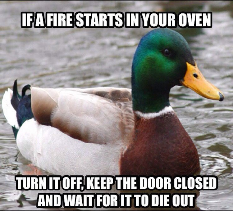 20 Tips from the Actual Advice Mallard [Images] - ChurchMag