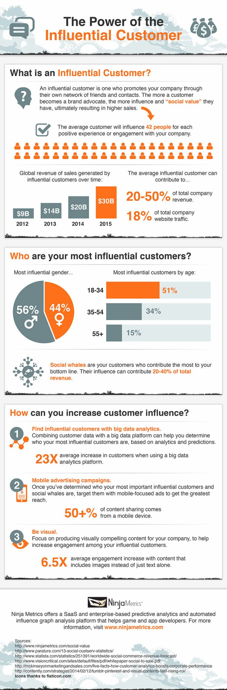The Power of the Influential Customer [Infographic]