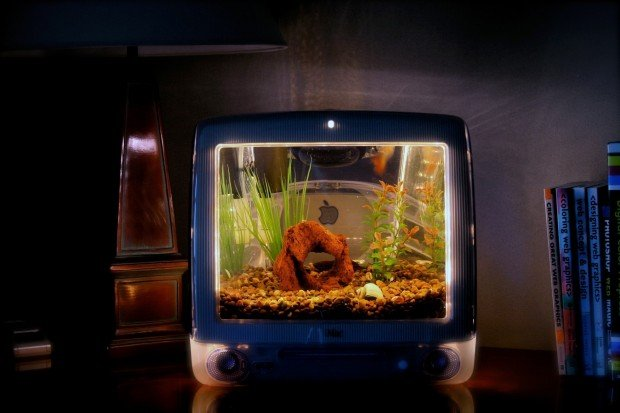 Macquarium Apple G3 Imac S Converted Into Fish Tanks