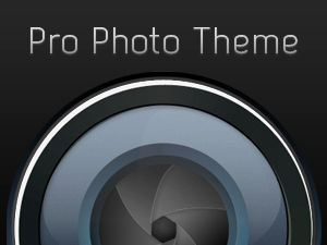 8BIT Releases Pro Photo Theme For WordPress