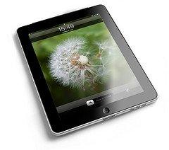 The Largest 1:1 iPad Initiative