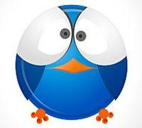 Twitter Crazy Bird