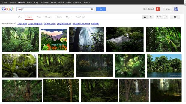 google jungle