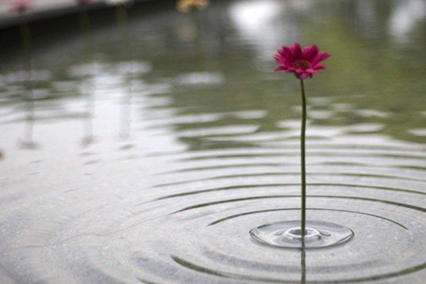Creative Floating Vases