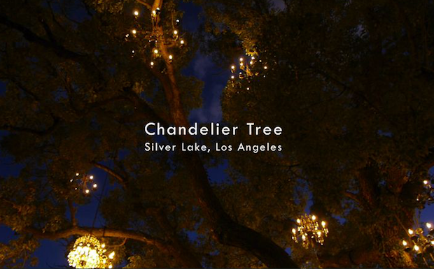 The Chandelier Tree of Silver Lake [Video]