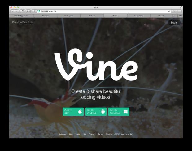 Vine Website Screenshot