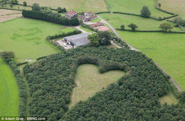 A Beautiful Secret: The Heart Shaped Acres