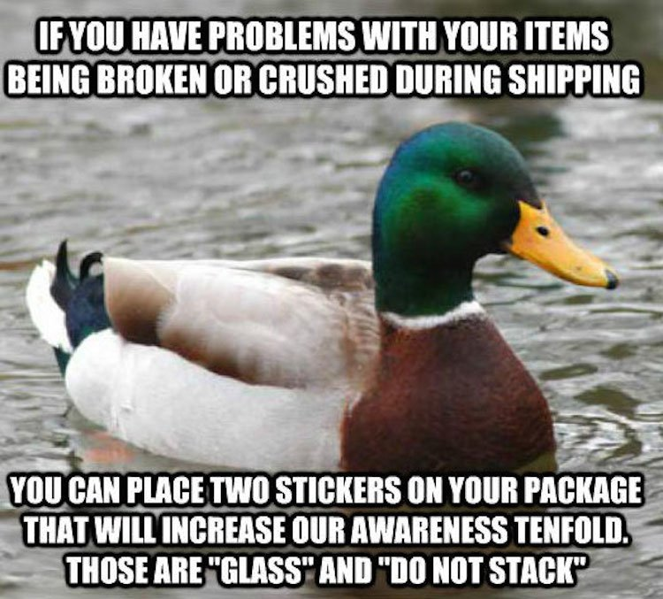tips-from-the-worlds-smartest-duck-best-of-actual-advice-mallard-17