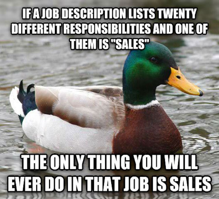 tips-from-the-worlds-smartest-duck-best-of-actual-advice-mallard-22