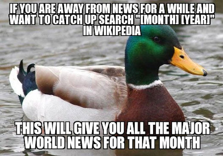 tips-from-the-worlds-smartest-duck-best-of-actual-advice-mallard-25