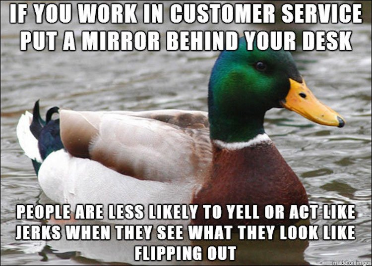 tips-from-the-worlds-smartest-duck-best-of-actual-advice-mallard-26