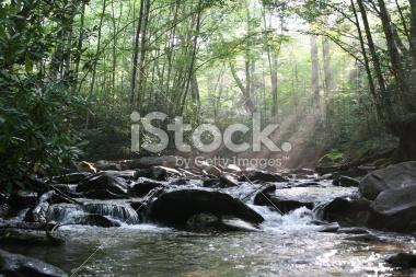 babbling-brook