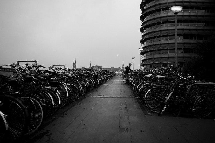 bike - bw