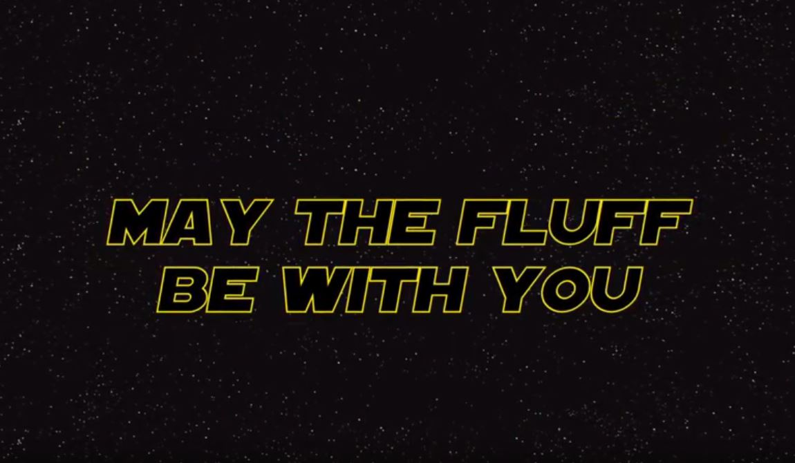 May the Fluff Be with You [Video]