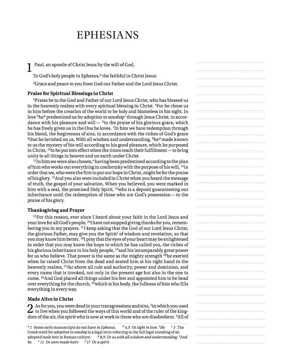 sample NIV journaling Bible