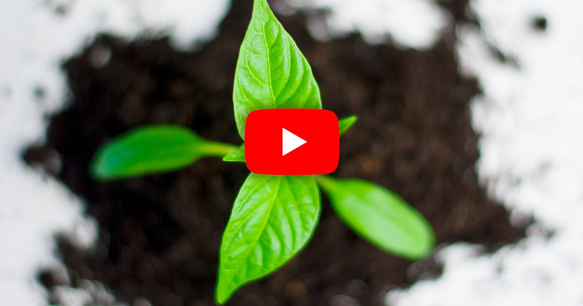 How To Work On Growing Your Ministry's YouTube Channel