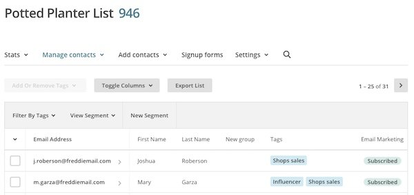 A screen shot of mailchimp tags in use