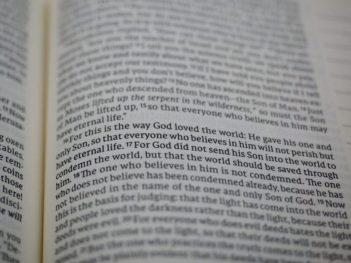 John 3:16 in the NET Bible Joural